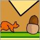 Écureuil agile