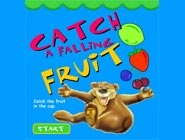Catch Fruit