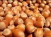 Hidden Stars Nuts