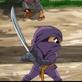 Ninja glorieux