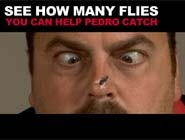 Pedro Flycatch