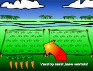 Plantez vos carottes