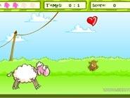 Saute moutons